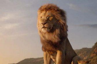 Подтвержден фильм «Король Лев 2». Режиссер не самый очевидный